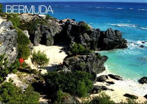 Bermuda Astwoods Cove South Shore