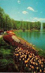 New York Tuxedo Sterling Forest Gardens Jewel PLanting On Side Of Internation...