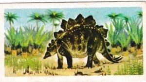 Trade Cards Brooke Bond Tea Prehistoric Animals No19 Stegosaurus