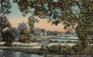 GRAND RAPIDS, Michigan, PU-1914; Bird's Eye View, State Bass Hatchery, Bridge