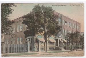 Mathes Shell Factory Batavia New York 1914 postcard