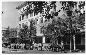 Zimbabwe Rhodesia Bulawayo, Street Scene, Carriage Donkeys