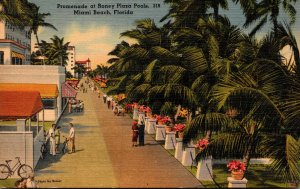 Florida Miami Beach Promenade At Roney Plaza Pools