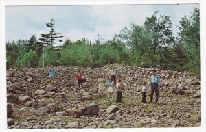 Lourdes, The Stone Field, Rigaud, Quebec, Canada, PU-1969