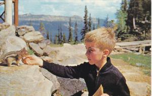 Canada Boy Feeding Chipmunk Banff National Park
