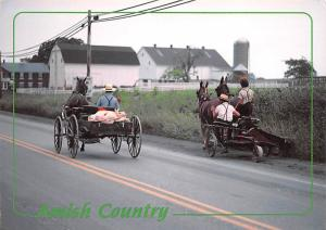 Amish Country -