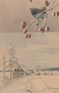 M.M.VIENNE Nr. 395: 1909 , Winter scene ; M. MUNK