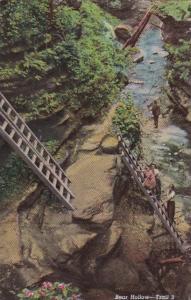Indiana Ladders Of Bear Hollow Trail 3 Turkey Run State Park Curteich