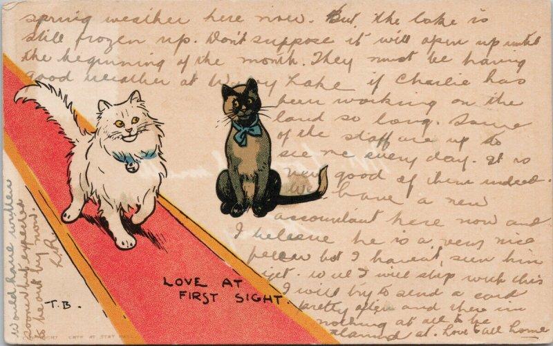 Cats 'Love At First Sight' TB c1912 Davidson Bros Tom Browne Postcard E77