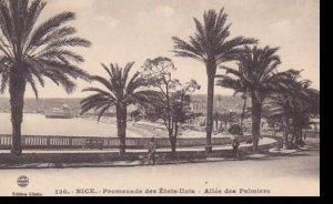 France Nice Promenade des Etats Unis Allee des Palmiers