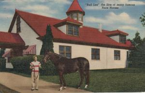 LEXINGTON , Kentucky, 1957 ; Race Horse Stallion Bull Lea
