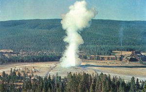 Postcard Yellowstone National Park Old Faithful Geyser
