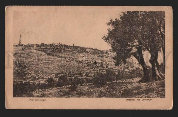 117211 Palestine Israel Der Oelberg Vintage PC