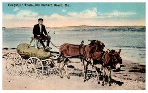 Maine Old Orchard Beach   Peanutine Team