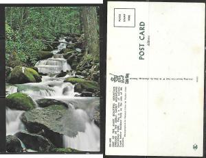 Great Smoky Nat'l. Park TN, Mountain Stream
