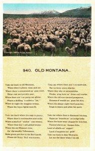 Old Montana, MT, Poem, Sheep, Unused White Border Vintage Postcard g8484