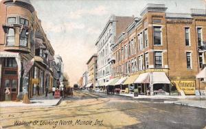 Munice Indiana~Walnut Street~Drug Store~Continental 10c Cigar~Bunn Tailor~1907