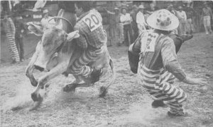 Convict Clown Prison Rodeo Huntsville Texas Postcard 20-1453