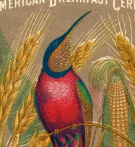 1870's-80's American Breakfast Cereal ABC Colorful Bird In Wheat P192