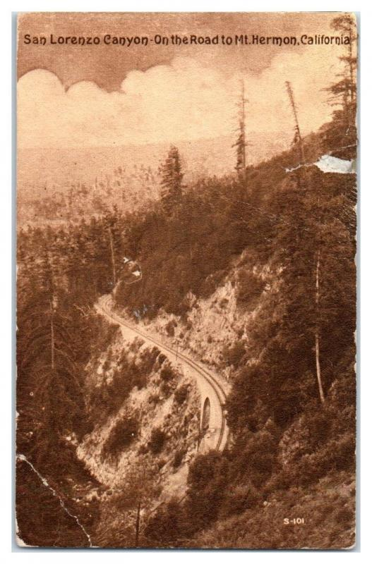 Early 1900s San Lorenzo Canyon, on the Road to Mt. Hermon, CA Postcard