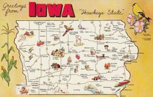 Greetings from IOWA, 1950-60s; Map, State Flower, Hawkeye State