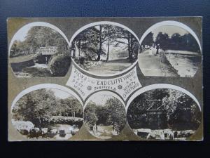Yorkshire Sheffield ENDCLIFFE WOODS 6 Image Multivie c1906 RP Postcard
