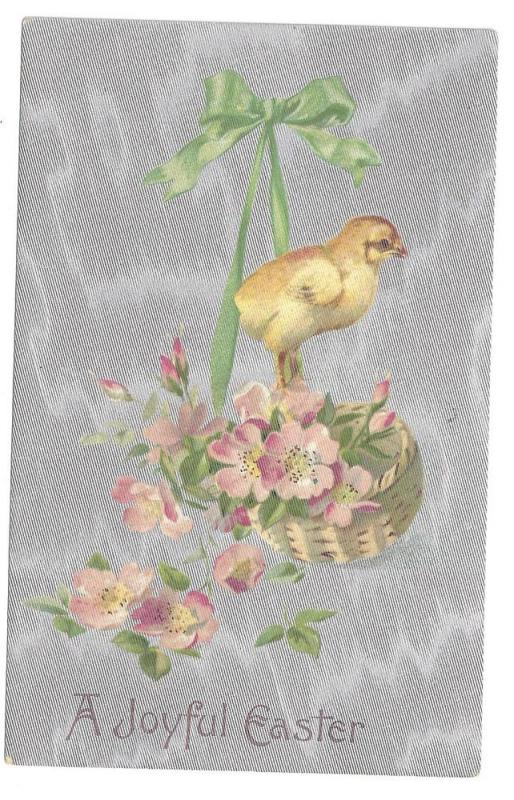 Vintage Easter Postcard Chick Apple Blossoms Silver 1908