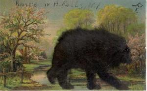 Furry Bear Serie 186 1907 writing on front