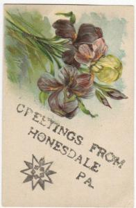 Greetings From Honesdale PA 1907 Embossed Glitter