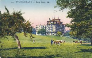 EVIAN LES BAINS, Haute Savoie, France, 1900-1910's; Royal Hotel, Cows