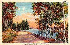 Pennsylvania Greetings From Lake Wallenpaupack Curteich