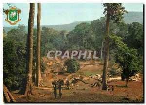 Modern Postcard Republic of Ivory Coast Typical village