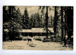 172045 LATVIA Treppenhof fasanpark HUNTING Vintage postcard