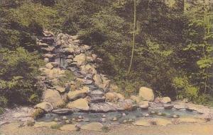 Pennsylvania Scranton Cascade And Pool The Ravine Marywood College Albertype