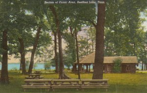 REELFOOT LAKE , Tennessee , 50-60s ; Section of Picnic Area