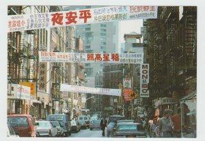 NY NYC Chinatown Mott Street New York City Postcard