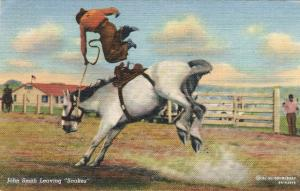 Western Cowboy Rodeo Bronco John Smith Leaving Snakes Curteich Linen Postcard