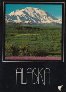 Alaska Mount Mckinley Magnificent Mount Mckinley The Highest Peak In the Unit...