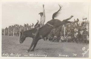 RP: YUMA , Arizona , 1940s ; Rodeo ; Eddy Akridge on Whirlaway