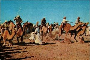 PC CPA SAUDI ARABIA, GETTING READY FOR THE CAMEL RACE, Modern Postcard (B3793)