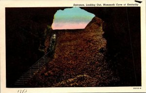 Vintage Postcard Looking Out Mammoth Cave Kentucky 1953 Cave City   210