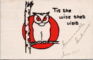 Owl In Tree 'Tis The Wise That Visit' Bird c1907 Postcard E65