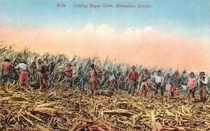 Hawaiian Islands, Cutting Sugar Cane
