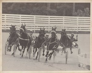 WINDSOR RACEWAY Harness Horse Race , ROYAL ASCOT N wins