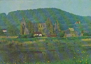 Wales Gwent Tintern Abbey From Across The River Wye
