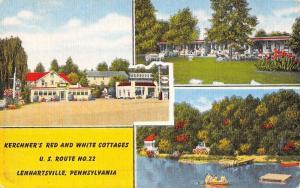 Lenhartsville Pennsylvania Kerchners Cottages Antique Postcard K52110
