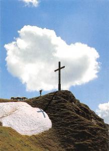 Seefeldspitze Tirol Cross Shepherd Sheeps Foto Werner H. Mueller