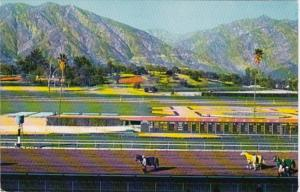 California Arcadia Santa Anita Park