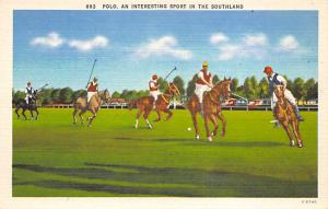 Polo an interesting spofrt in the Southland Polo Unused