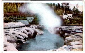 TAMMEN 4402 Oblong Geyser, Yellowstone National Park